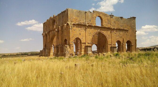 Y. Le Bohec, L'armée romaine d'Afrique sous le principat